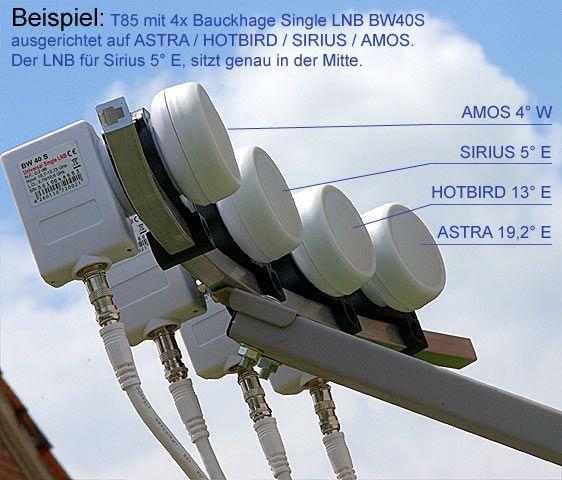 Lifewave Antenne Erfahrung